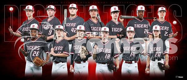 DHS JV Baseball Team