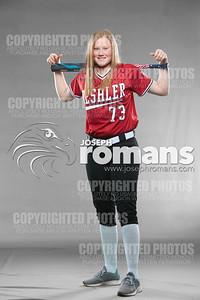 Deshler Baseball & Softball53986