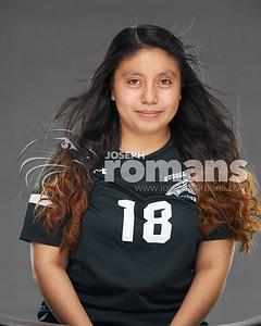RHS Tennis & Soccer Banners52797