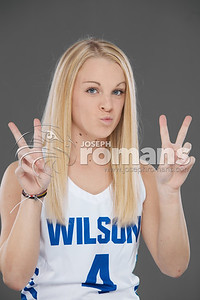 Wilson Basketball Banners0505
