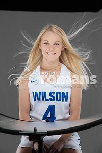 Wilson Basketball Banners0531