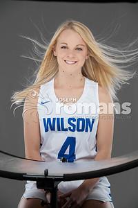 Wilson Basketball Banners0535