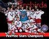 Firebirds PW Stars copy