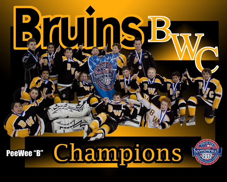 Bruins copy