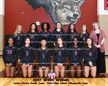 2017 Weiss Volleyball
