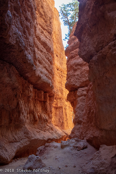 Navajo Loop Trail - Bryce Canyon National Park