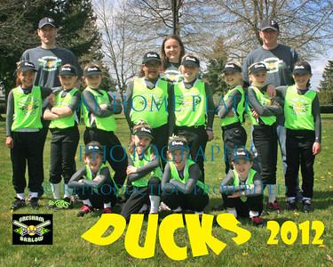 10 U Ducks Team Pics