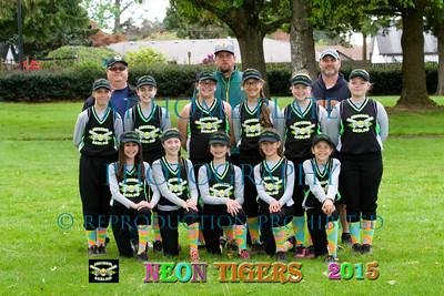 12U Neon Tigers