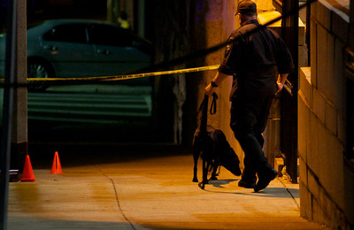 090212, Boston, MA - Using a trained dog, Boston Police search for evidence in front of the old Joseph H. Barnes School on Marion Street in East Boston after a shooting occured around 9 p.m. Sunday night. Herald photo by Ryan Hutton