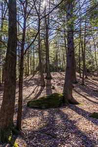 Early Spring in Black Rock State Park, Watertown, CT