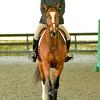 EquestrianIHSA Show2018-43