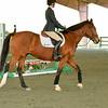 EquestrianIHSA Show2018-40