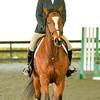 EquestrianIHSA Show2018-48
