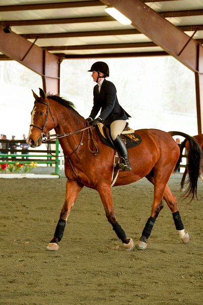 EquestrianIHSA Show2018-15