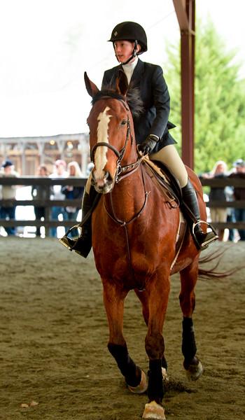 EquestrianIHSA Show2018-11