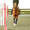 EquestrianIHSA Show2018-60