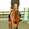 EquestrianIHSA Show2018-47