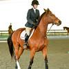 EquestrianIHSA Show2018-57
