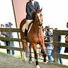 EquestrianIHSA Show2018-102
