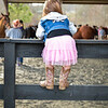 EquestrianIHSA Show2018-214