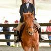 EquestrianIHSA Show2018-414