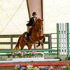 EquestrianIHSA Show2018-341