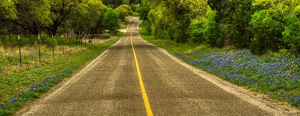Texas Country Road in the Springtime 2019