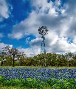 Very Texas