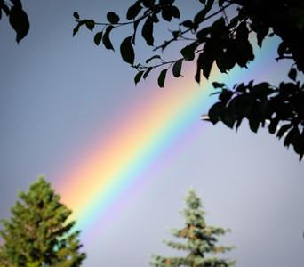 Rainbow on July 9 2020 by Barry Headrick