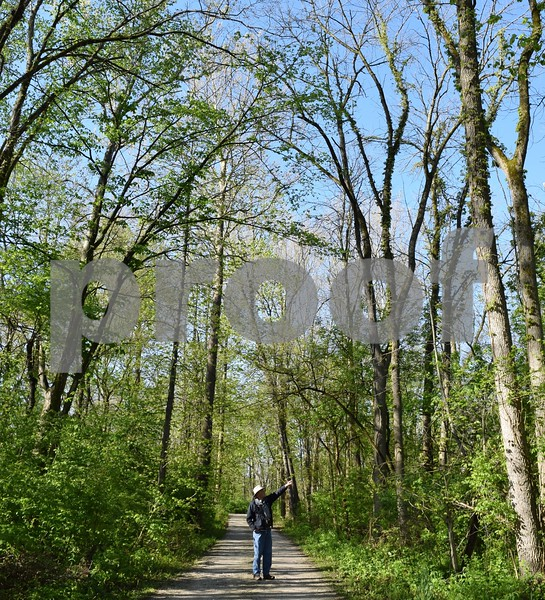 Darrell Shambaugh of Somonauk points at circling turkey vultures overhead at Sannauk Forest Preserve in Somonauk during the annual statewide Spring Bird Count on May 6. Shambaugh, the SBC organizer and compiler for DeKalb County, said birding can be a fun social event if you bring along a friend, a pair of binoculars and a book.