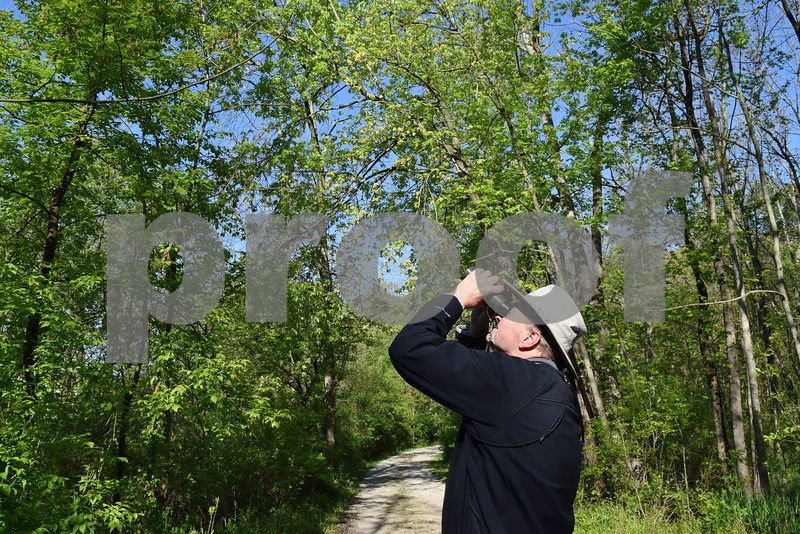 Darrell Shambaugh of Somonauk looks for birds in Sannauk Forest Preserve in Somonauk during the annual statewide Spring Bird Count on May 6. Shambaugh, the SBC organizer and compiler for DeKalb County, said birding can be a fun social event if you bring along a friend, a pair of binoculars and a book.