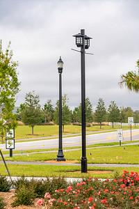 Spring City - Florida - 2019-6