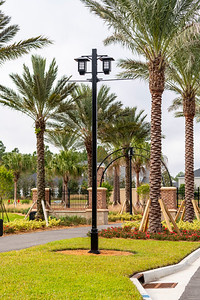 Spring City - Florida - 2019-17