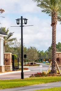 Spring City - Florida - 2019-32