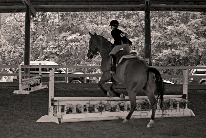 rider137_1117-1sepia