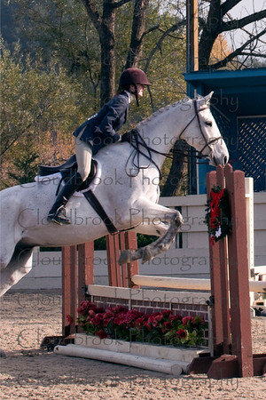 Spring Down Equestrian Shows