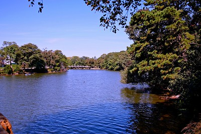 Beautiful Spring Lake One block from the beach