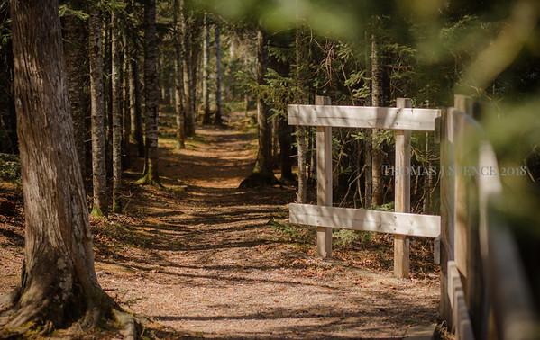Campground Trails 2