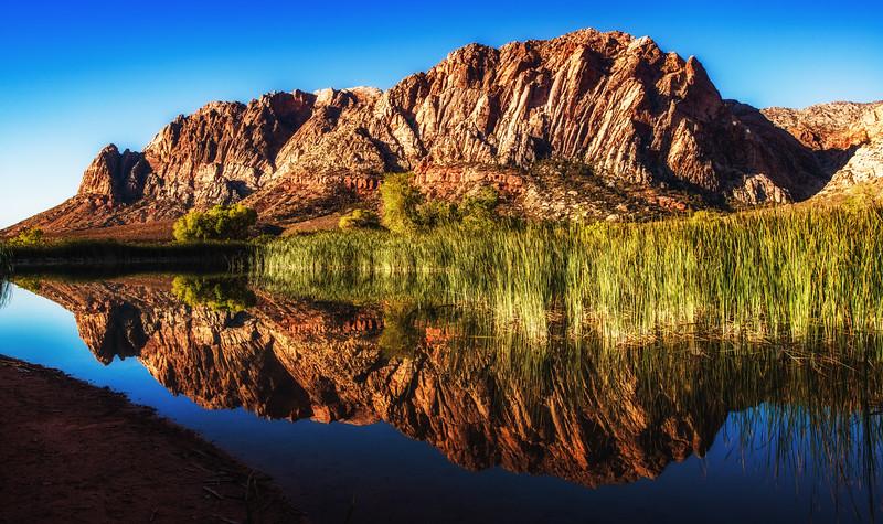 Lake Harriet Reflection