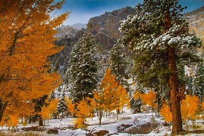 First Snowfall, Upper Kyle Canyon