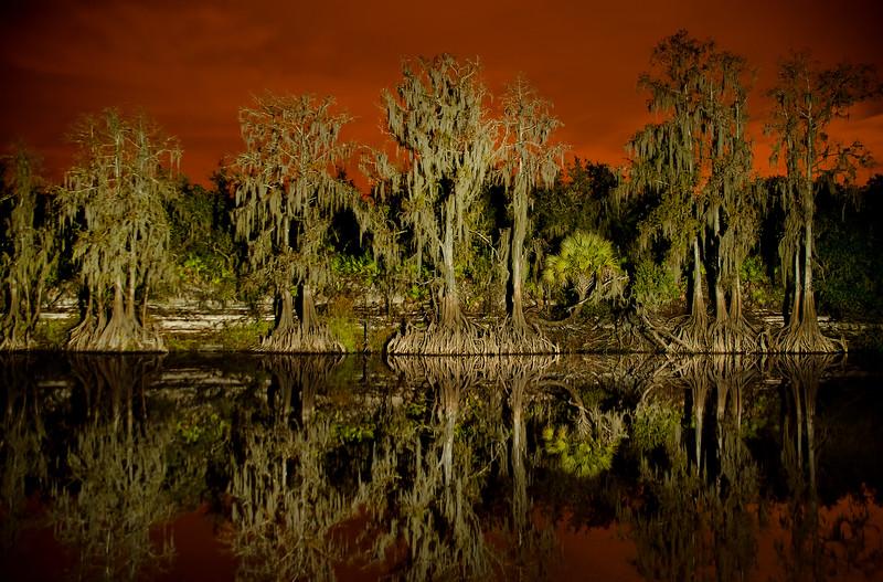 Peace River - Arcadia Florida