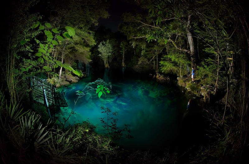 Peacock Springs