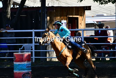 Spring Run Classic 4/21/18 Novice