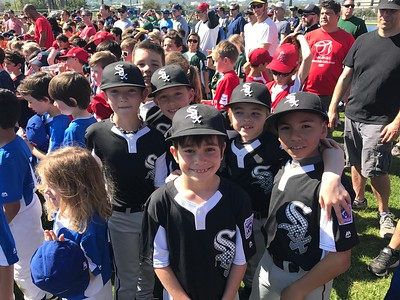 AAA - White Sox - 2017