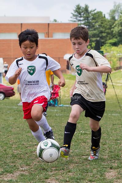 Spring Sports 2015