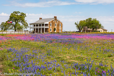 Whitehall historic mansion surrounded by colorful wildflowers