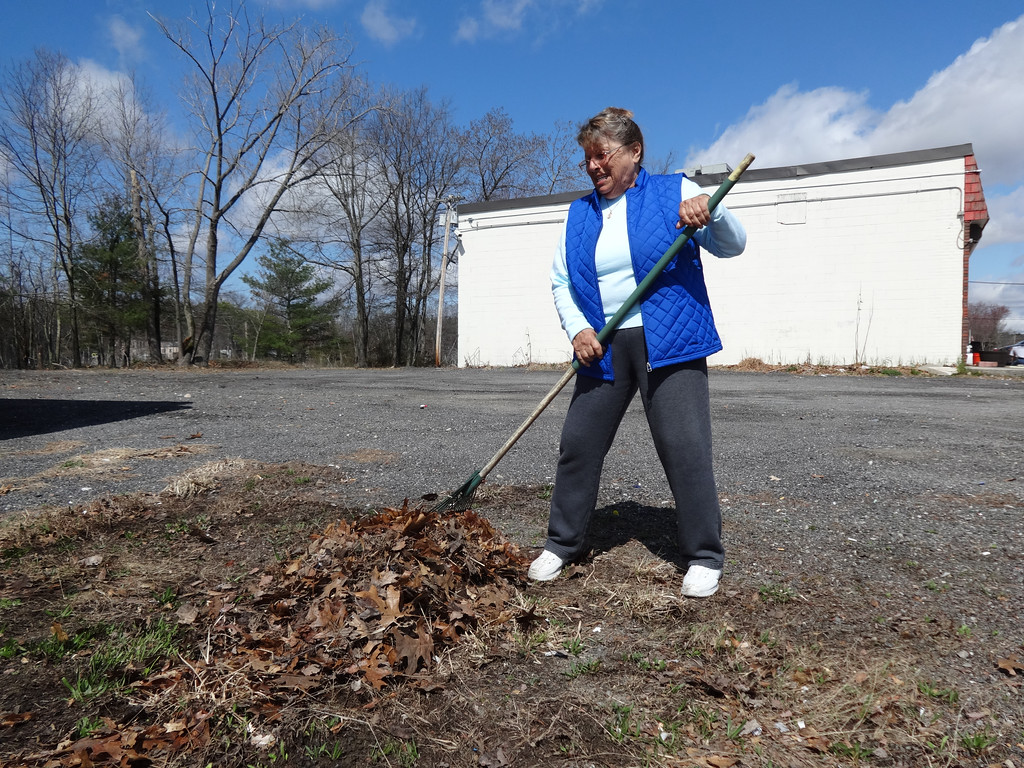 . Annette Ducharme of Billerica racked leaves near a wetland along 3A. Photo by Mary Leach