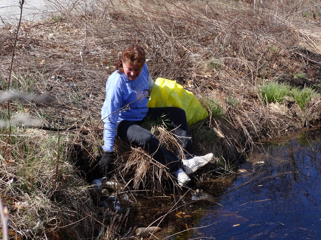 . Rhond Ducharme of Billerica said she was cleaning the wetland area so wildlife has a clean place to live. Photo by Mary Leach