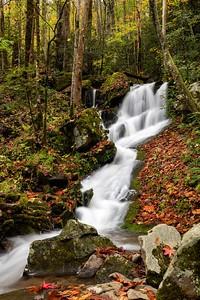 Tremont Road Falls