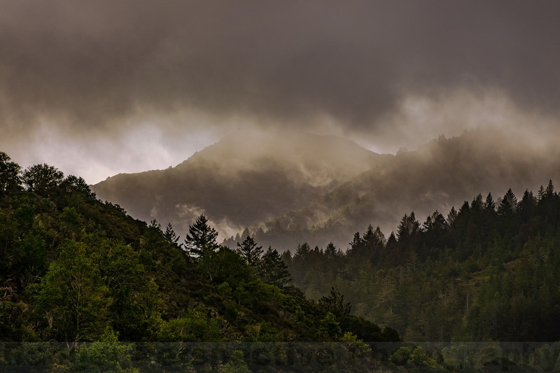 Mount Tam: Clearing Storm